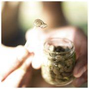 Schnecken-Leber, Leber der Escargots