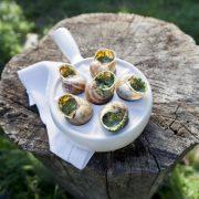 Gratinierte Escargots von Gugumuck, Weinbergschnecken gratiniert mit Schneckenbutter, Parmesan, Rosmarin, Mandel - spezielle Schneckenbutter. Eine Gugumuck Schneckenpfanne oder eine exklusive 6er Schnecken-Pfanne von Augarten Porzellan als Geschenk oder das Dinner zu zweit.