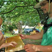 Bienenzentrum, Kurse zur Imkerei erklären alle Arbeiten