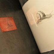 Kupferpresse mit Kupferstich einer Escargot aus dem Hause Wiener Schneckenmanufaktur Gugumuck