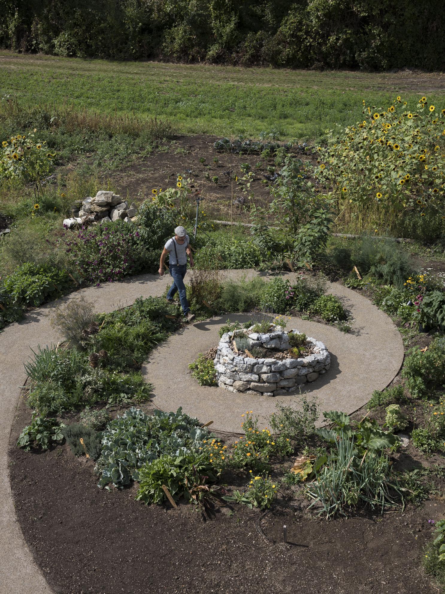 Nachhaltig Permakultur Waldgarten Kräutergarten für Weinbergschnecken, Escargots, auf der Stadtlandwirtschaft