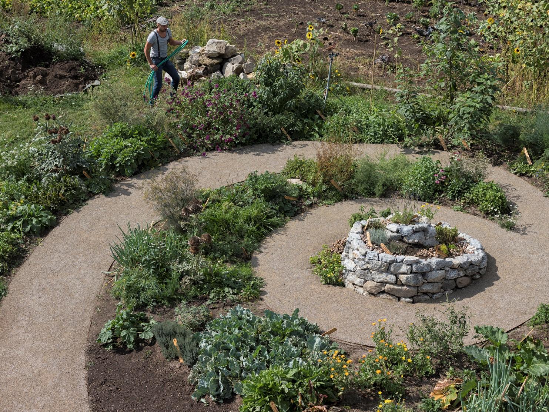 Nachhaltig Permakultur Waldgarten Kräutergarten für Weinbergschnecken, Escargots auf der Stadtlandwirtschaft, nachhaltigen Gedanken, ökologischer Effekte, Anliegen